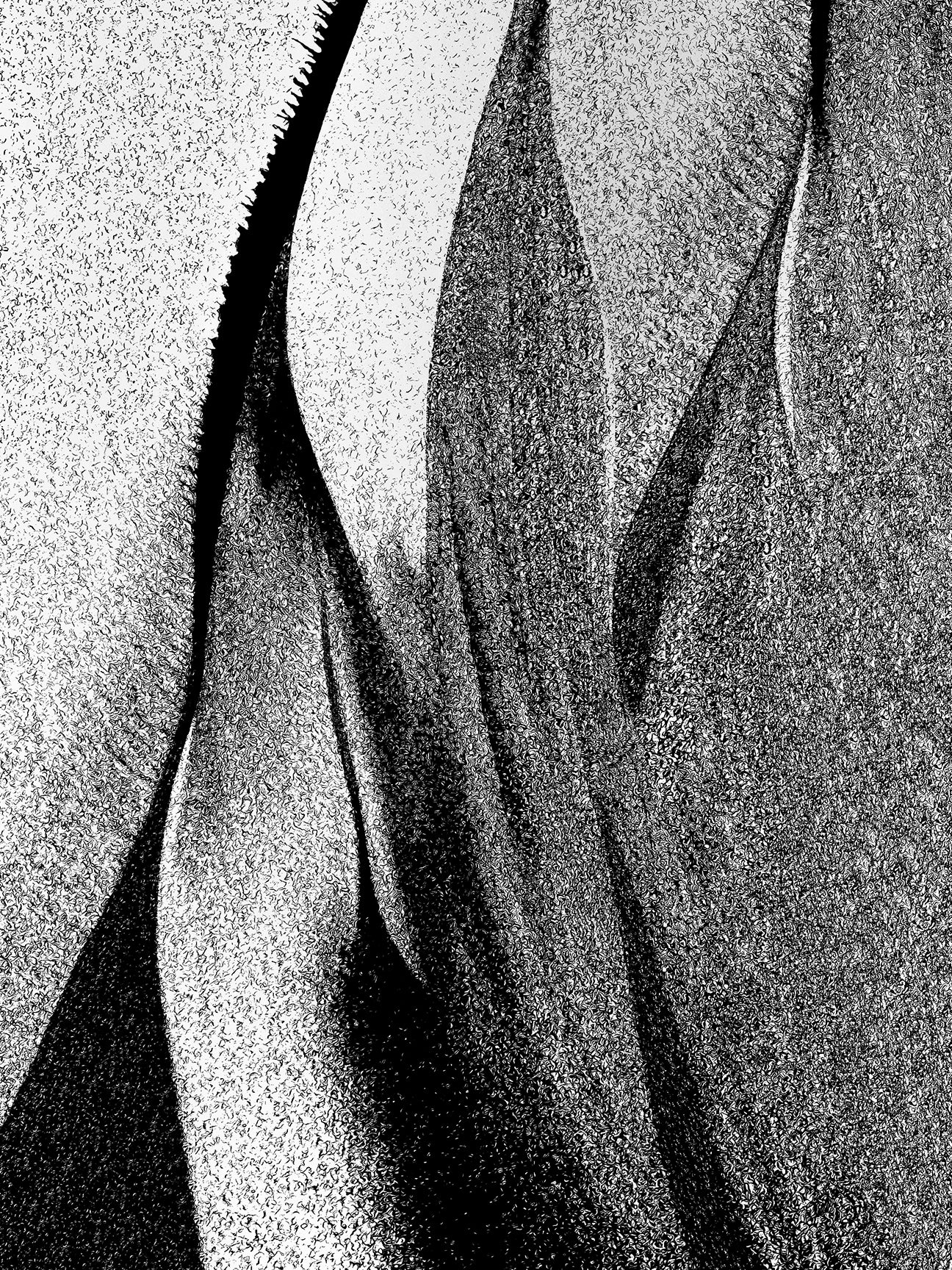 veins-of-the-sea-3-cropped