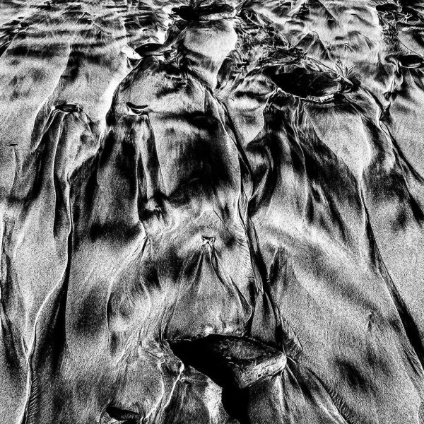 Fine Art Prints Veins of the Sea - Part 2